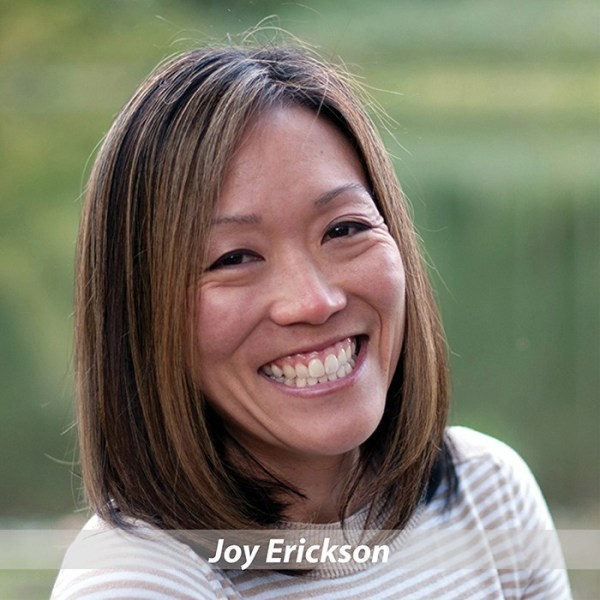 Joy Erickson, Board of Directors